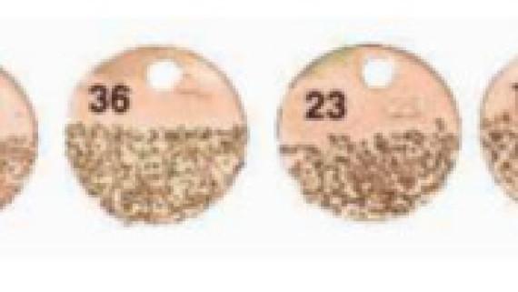 výběr zrnitosti brusných kotoučů                   Typy:                 UW50x25  UW76x25   UW102x25    UW102x38          CW50x25 + CW65x13 + CW76x32 + CW102x38 + CW150x38